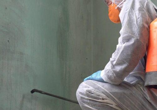 mikes painting and flooring atlanta GA